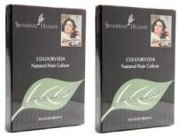 Shahnaz Husain Colourveda Hair Color(Blackish Brown)