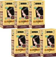 Indus Valley 100% Organic Botanical Indus Black (Set of 6) Hair Color(Indus Black)