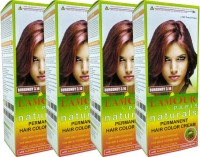 L'amour Paris Naturals Permanent Burgundy 3.16 - Set of 4 - Cream Hair Color(Burgundy 3.16)