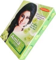 Ganesha AMLA POWDER(100 g)
