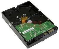 WD Sata 160 GB Desktop Internal Hard Disk Drive (WD1600AABS)