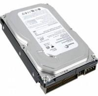 Seagate Slim 160 GB Desktop Internal Hard Disk Drive (ST3160215ACE)