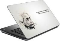 View Vprint Albert Vinyl Laptop Decal 14 Laptop Accessories Price Online(Vprint)