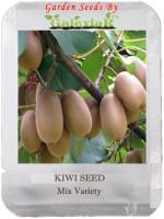 SENECIO™ Kiwi Seed(20 per packet)