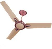 View Standard RINGO - BLUSH MAGENTA 3 Blade Ceiling Fan(BLUSH MAGENTA) Home Appliances Price Online(Standard)