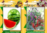 Airex Water Melon, Gomphrena Mixed Seed(15 per packet)