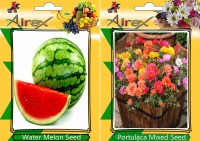 Airex Water Melon, Portulaca Mixed Seed(15 per packet)