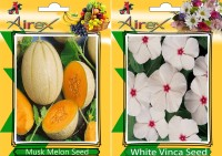 Airex Musk Melon, White Vinca Seed(15 per packet)