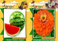 Airex Water Melon, Orange Zinnia Seed(15 per packet)