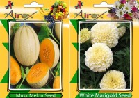 Airex Musk Melon, White Marigold Seed(25 per packet)