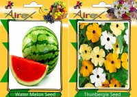 Airex Water Melon, Thunbergia Seed(25 per packet)