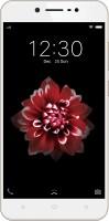 VIVO Y66 (Crown Gold, 32 GB)(3 GB RAM)