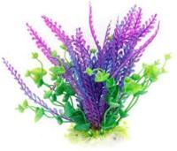 GREEN FARMS aquarium grass Seed(50 per packet)