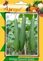 Airex Ridge Gourd Seed(1 per packet)