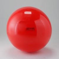 Gymnic Classic Physio Gym Ball