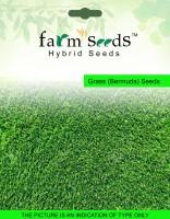 Farm Seeds Bermuda Grass Seed(100 g)