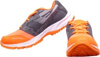 The Scarpa Shoes Running Shoes(Orange)