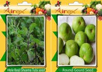 Airex Holy Basil (Shyama Tulsi), Round Gourd (Tinda) Seed (15 seed per packet) Seed(15 per packet)
