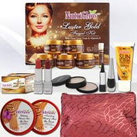Nutriglow LusterGlow_29_18 250 g(Set of 10) - Price 897 77 % Off