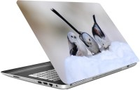 View imbue snow birds high qality vinyl Laptop Decal 15.6 Laptop Accessories Price Online(imbue)