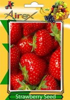 Airex Strawberry Fruit Seeds (pack of 30 Seeds * 3 Per Packet) Seed(90 per packet)