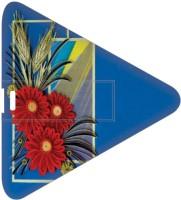 View Printland PDT161090 16 GB Pen Drive(Multicolor) Laptop Accessories Price Online(Printland)