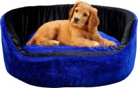 Shaurya This Blue Color Pet house is very acttractive and lovable by pet. M Pet Bed(Blue)