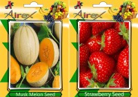 Airex Musk Melon, Strawberry Seed(25 per packet)