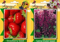 Airex Strawberry, Salvia Violet Seed(25 per packet)
