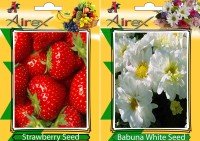 Airex Strawberry, Babuna White Seed(25 per packet)
