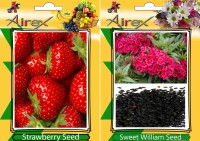 Airex Strawberry, Sweet William Seed(15 per packet)