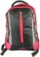 Campfire CAM LINPACK 2 Waterproof Multipurpose Bag(Multicolor, 32 L)