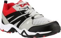 Sparx 284 Running Shoes For Men(Grey, Black)