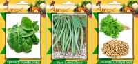 Airex Spinach, Lobia (Bean), Coriander Seed(15 per packet)