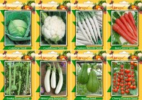 Airex Cabbage, Cauliflower, Daikon, Red Carrot, Banga, Cherry Tomato, Snake Gourd, and White Long Brinjal Seed(15 per packet)