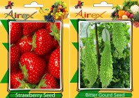 Airex Strawberry, Bitter Gourd Seed(25 per packet)