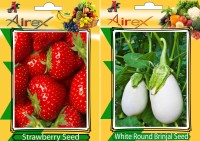 Airex Strawberry, White Round Brinjal Seed(25 per packet)
