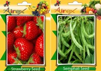 Airex Strawberry, Semphali Seed(15 per packet)