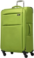 Skyway FLAIR Expandable  Check-in Luggage - 28 inch(Green)