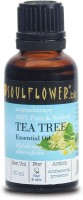Soulflower Tea Tree Essential Oil(30 ml)
