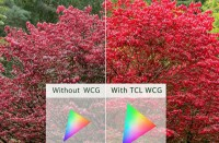 TCL Android Tvs