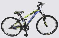 Phoenix Echo 4 Bike For Juniors 24 T Mountain/Hardtail Cycle(Single Speed, Multicolor)
