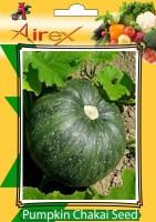 Airex Pumpkin Seed(25 per packet)