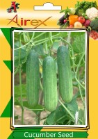 Airex Cucumber Seed(100 per packet)