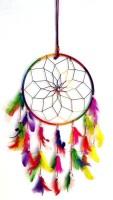 Unique Crafts Dream Catcher Wall Hanging Decorative Showpiece  -  20 cm(Feather, Multicolor)