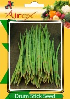 Airex Drum Stick Seed(15 per packet)