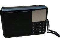CRETO latest brand new fm radio support usb pendrive aux headphone out memory card FM Radio(Black)