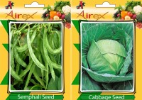 Airex Semphali and Cabbage Vegetables Seed (Pack Of 20 Seed * 2 Per Packet) Seed(20 per packet)