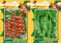 Airex Cherry Tomato and Lettuce Vegetables Seed (Pack Of 25 Seed * 2 Per Packet) Seed(25 per packet)