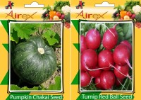 Airex Pumpkin and Turnip Red Ball Vegetables Seed + Humic Acid Fertilizer (For Growth of All Plant and Better Responce) 15 gm Humic Acid + Pack Of 30 Seed Pumpkin + 30 Turnip Red Ball Seed(30 per packet)